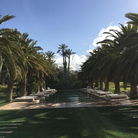 Ksar Char-Bagh: Un oasi di pace per la mente e per il corpo. Una location veramente indimenticabile. Dalle camer