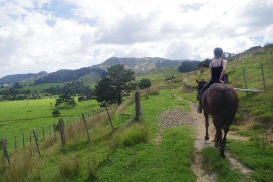 Colville Farm Holidays Horse Trekking: Experienced rider on Chance leading the way