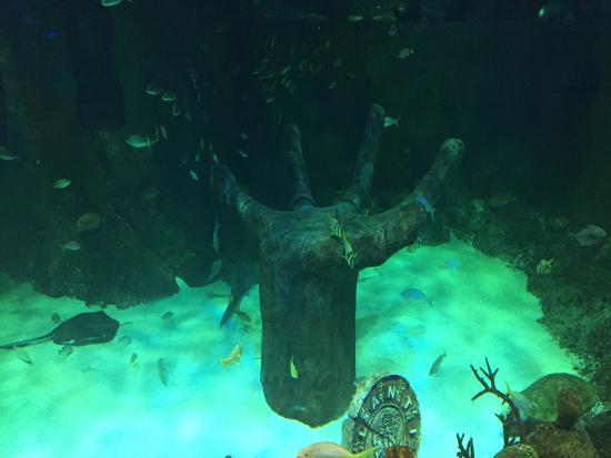Bottom of the Sea, Philadelphia - 327 S 52nd St - Menu