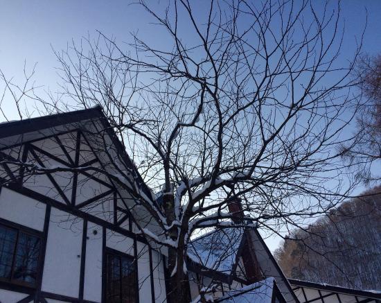 Hotel Mont Blanc Hakuba 사진