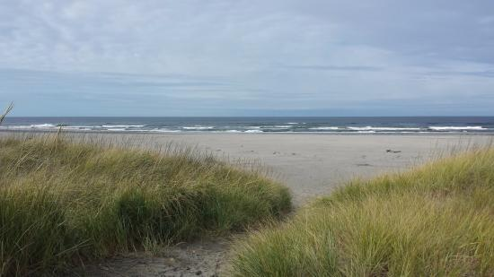 ลองบีช, วอชิงตัน: Trail to the beach