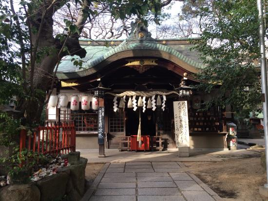 ‪Matsubara Shrine‬