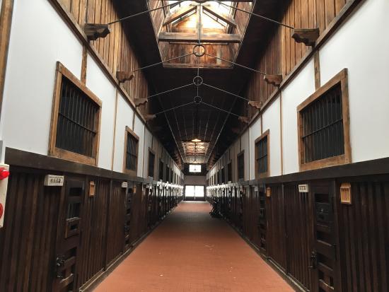 photo2.jpg - Picture of Abashiri Prison Museum, Abashiri - TripAdvisor