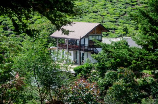 Hill Safari Eco Lodge Ohiya Photo
