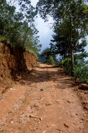 Hill Safari Eco Lodge Ohiya: Road to Hotel. its not very good