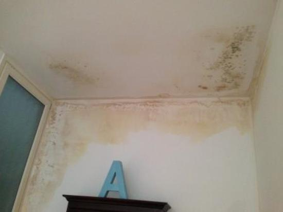 Barcelona Nextdoor Apartments: Dinningroo,, the wall was full of mold!!!! shame on you to put gueat in this appartment