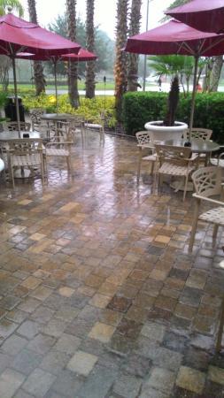 Hilton Garden Inn Palm Coast foto