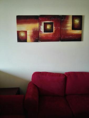 Arar照片