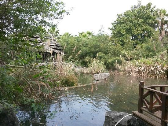 水上园博园