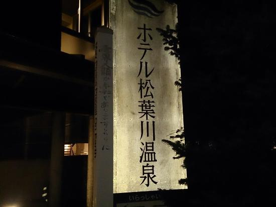 Hotel Matsubakawa Onsen : DSC_0855_large.jpg