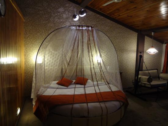 Honeymoon Special room Picture of Honeymoon Inn Manali Manali