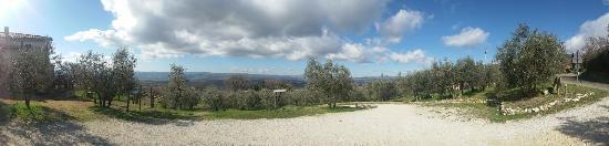 Montecchio, Italy: Panorama 1