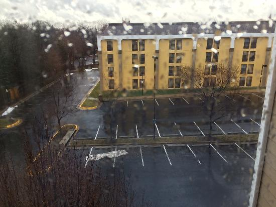 Homewood Suites Alexandria: View from room 428