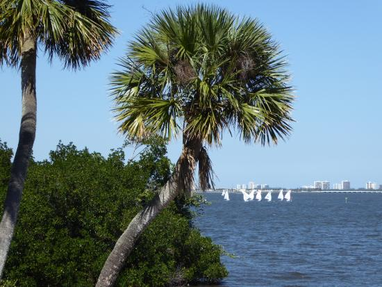 Indian Riverside Park: Sail boats competing