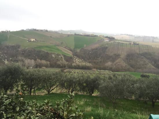 Montalto delle Marche, Ιταλία: Se