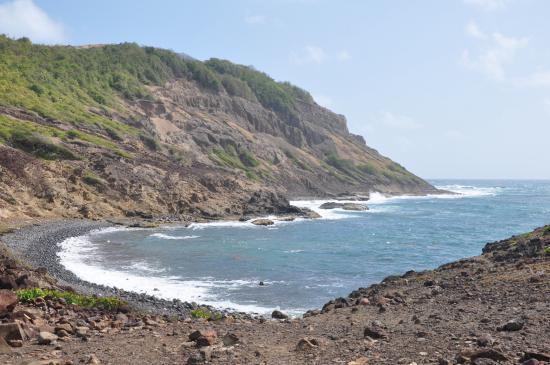 Plage de galets - Photo de Parc Naturel Regional de la Martinique ...