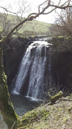 North Yorkshire, UK: Aysgill Force