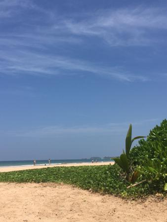 Bentota, Sri Lanka: photo1.jpg