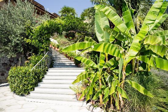 Hotel Lagrein: Gartenparadies
