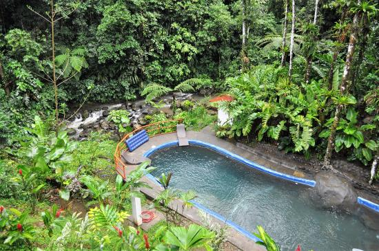 Agua Inn: Beautiful pool near the jungle