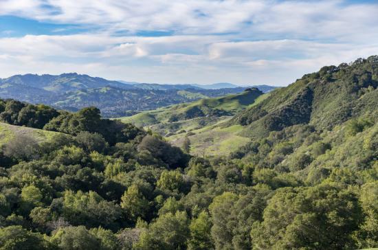 Las Trampas Regional Wilderness