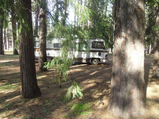 Nevada County Fairgrounds Camping