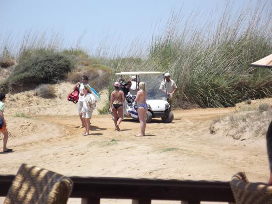 Golf Caddy Transfer Zum Strandcoole Sache Bild Von Türkei
