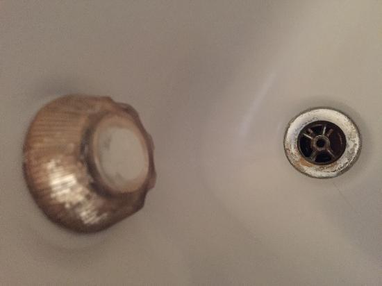 Hotel Astra: Abfluss Duschkabine