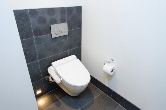 Room 240 Master Bath Bidet Style Toilet Picture Of Andaz Maui At - Amazing-toilets-and-bidets-collection-from-stile