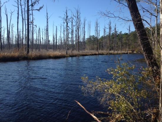 Oak Island Nc Nature Trail
