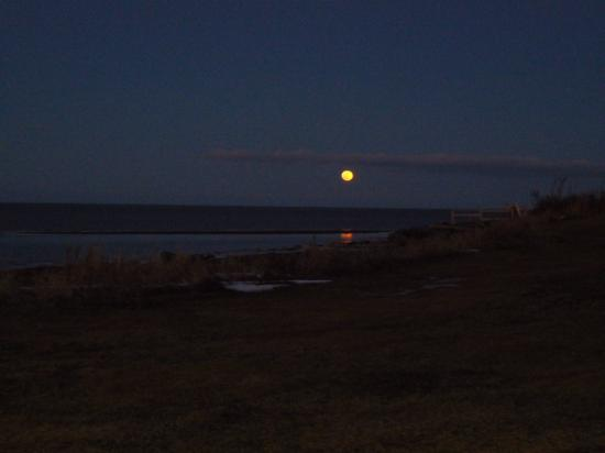 Cambra Sands: Moon coming up over the beach