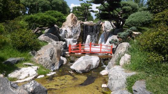 jardin japones cascada del jardn japones