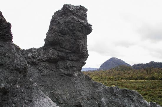 Whataroa, New Zealand: Alpine Fault Tours Rams Head