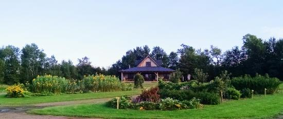 Harris, MI: Vinsted (tasting room) and self guided fruit gardens