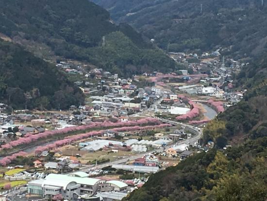Kawazu Castle Historical Park: photo0.jpg