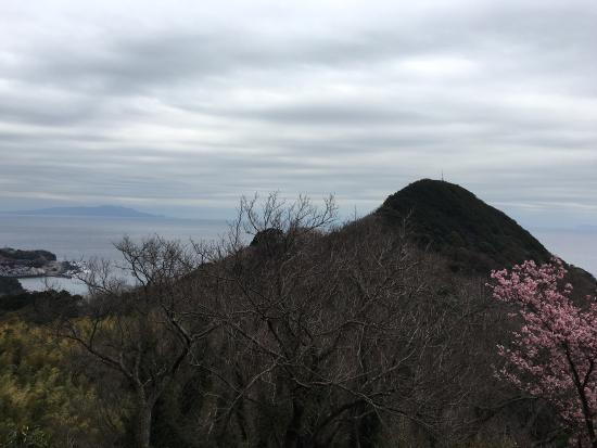 Kawazu Castle Historical Park: photo2.jpg