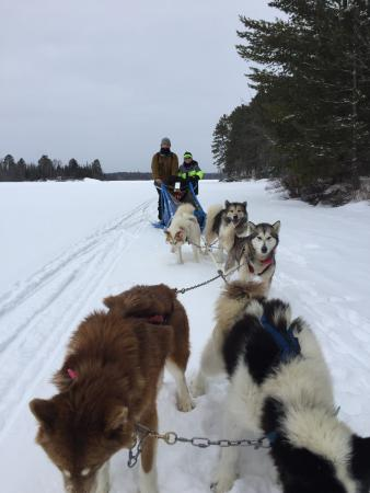 Wintergreen Dogsled Lodge