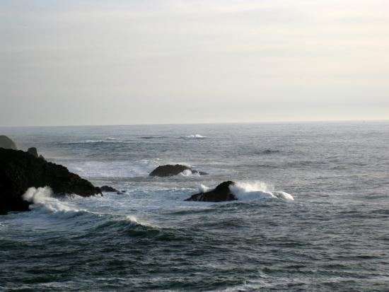 ดีโพเบย์, ออริกอน: Otter Crest Loop - views