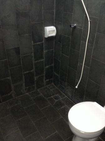 Hotel Rei Davi : banheiro simples, sem degrau e com uma banco de plastico caso seja necessario usar.