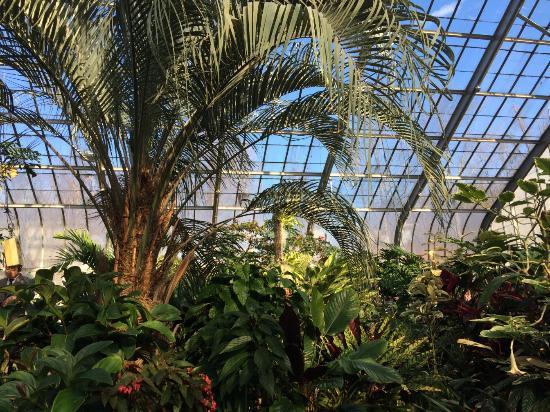 the greenhouse picture of brookside gardens wheaton tripadvisor rh tripadvisor com