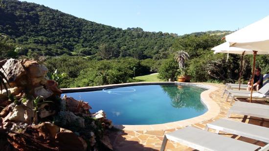 Thunzi Bush Lodge Resmi