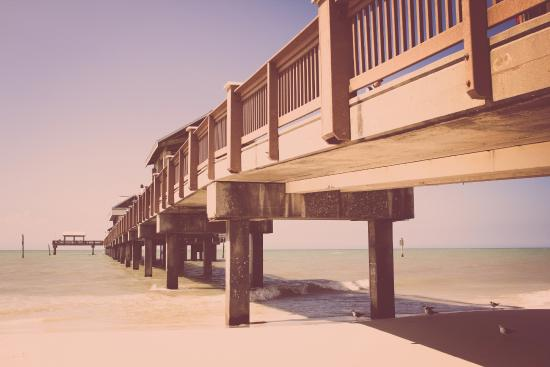 at pier 60 clearwater beach picture of clearwater beach rh tripadvisor com