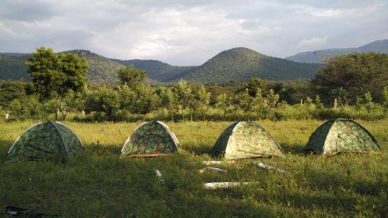 BR Hills Nature Camps照片