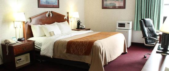 Comfort Inn Blacksburg : Guest Room King size bed
