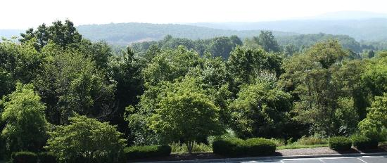Comfort Inn Blacksburg: Beautiful views of Blue Ridge Mountains from your guest room