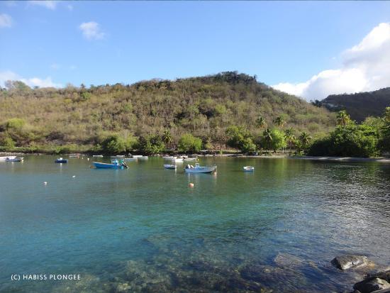 Vieux-Habitants, Guadeloupe : Anse à la Barque - Departrure's creek