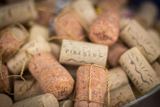 Pireneus Vinhos e Vinhedos