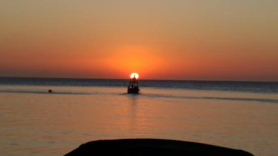 Blue Marlin : Beautiful sunset!