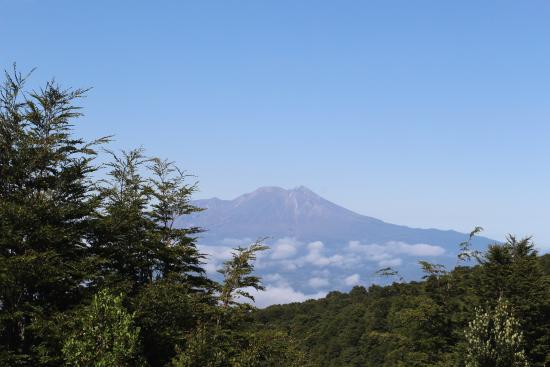 PuertoMontt-Excursiones: A view of the active volcano