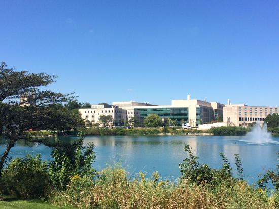 picture of northwestern university rh tripadvisor com